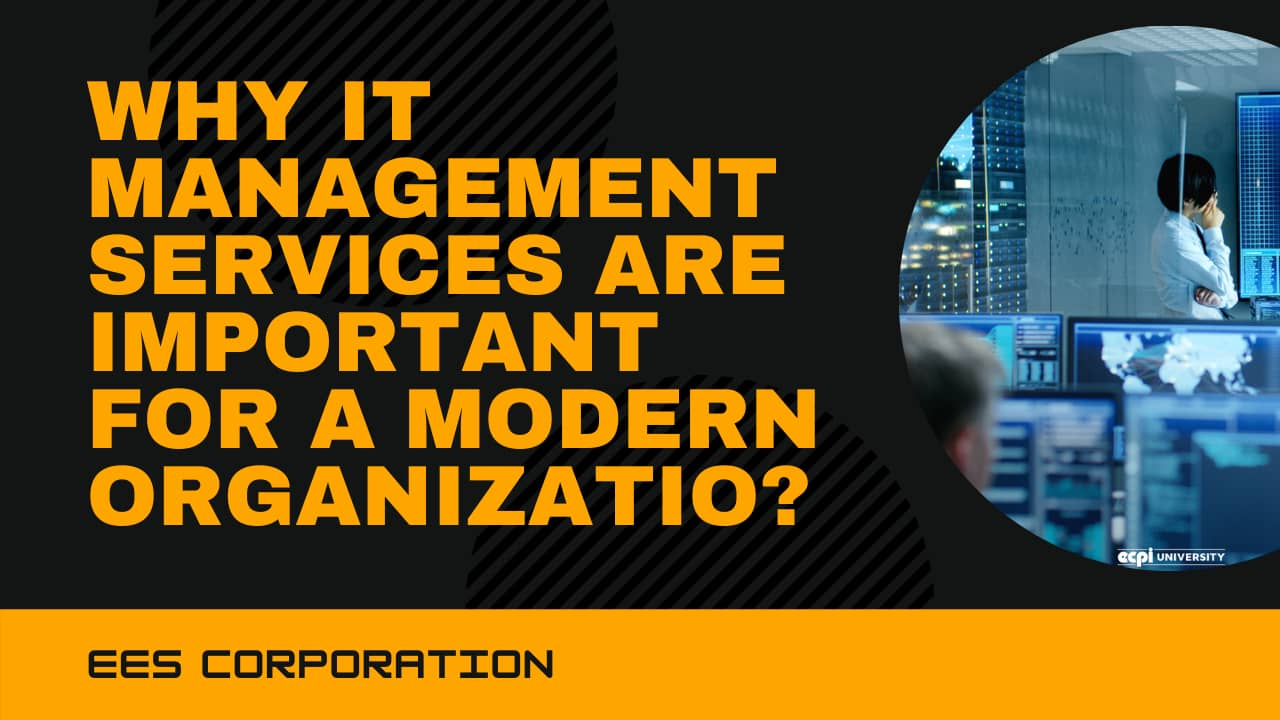 Why IT management services are important for a modern organization